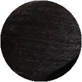 Black_Final